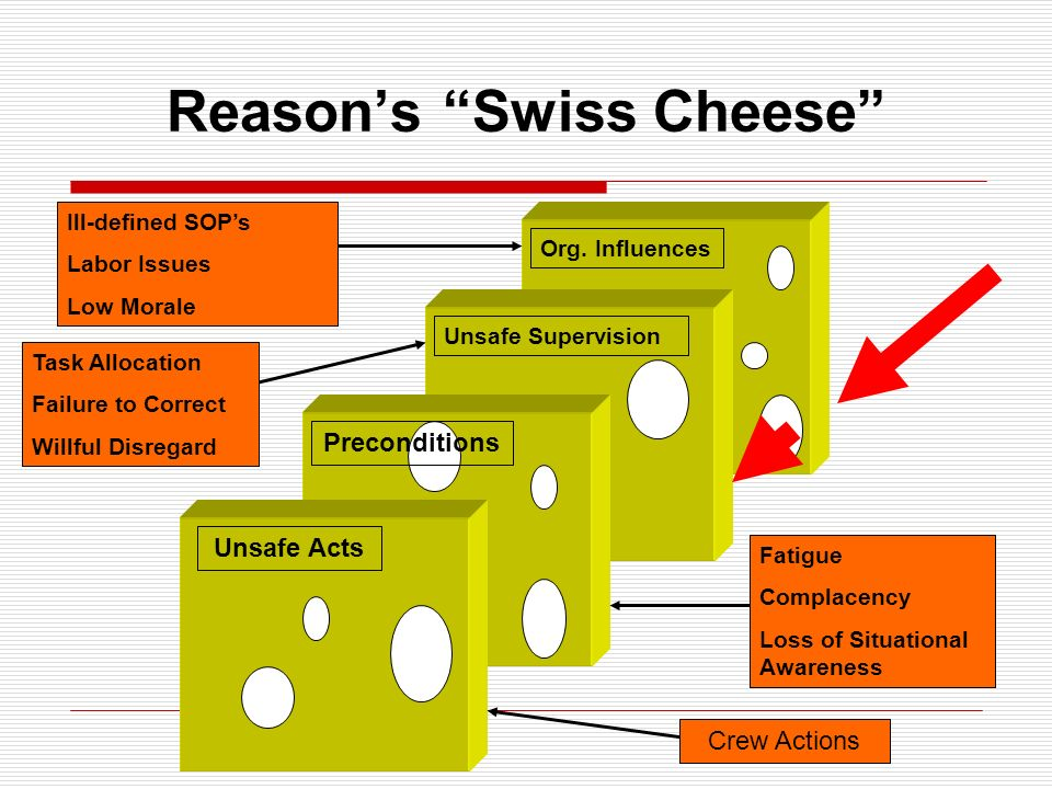 Reason's Swiss Cheese