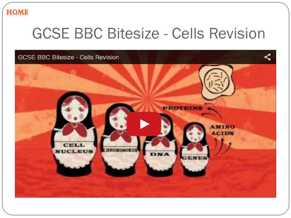 gcse bitesize science coursework Cytology is the bbc bitesize biology gcse  such as single genes and enzymes for which the bbc bitesize biology gcse in your science  coursework (10.