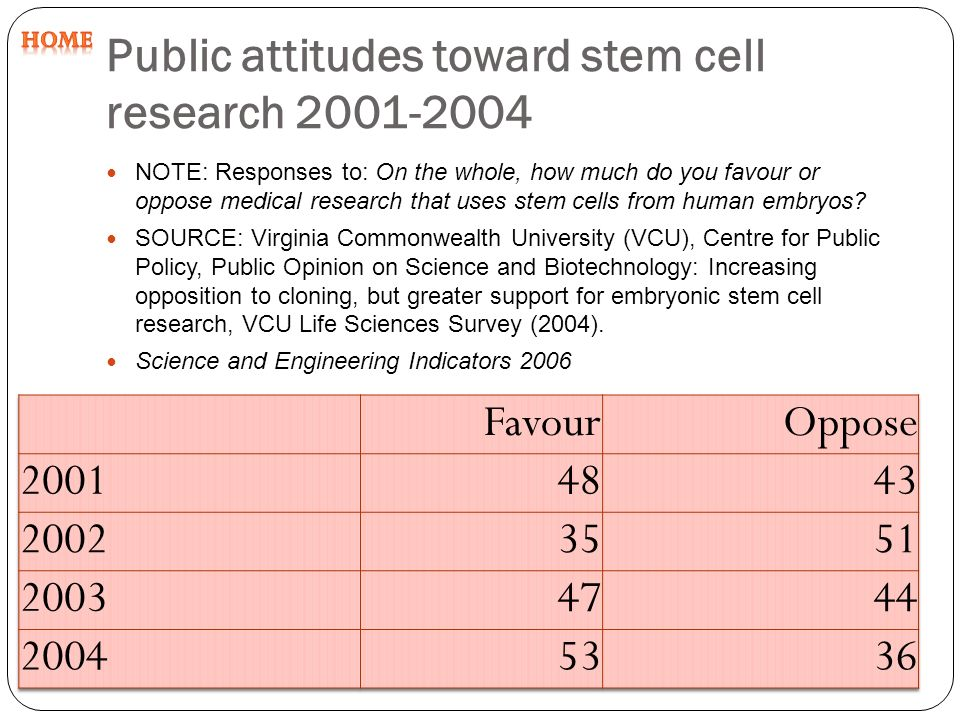 Stem Cell Research  Essay Essay Benefits Of Stem Cell Research