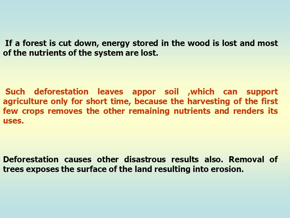 If a forest is cut down, energy stored in the wood is lost and most of the nutrients of the system are lost.