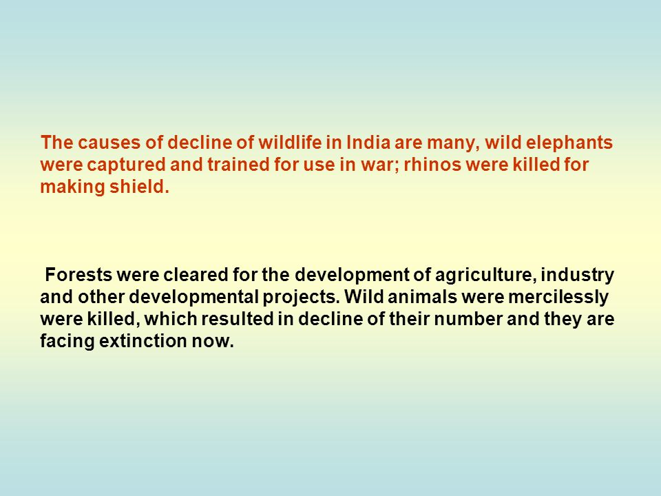 The causes of decline of wildlife in India are many, wild elephants were captured and trained for use in war; rhinos were killed for making shield.