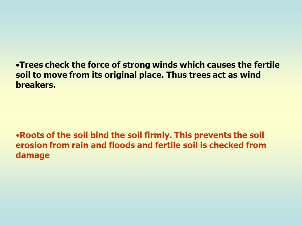 Trees check the force of strong winds which causes the fertile soil to move from its original place. Thus trees act as wind breakers.