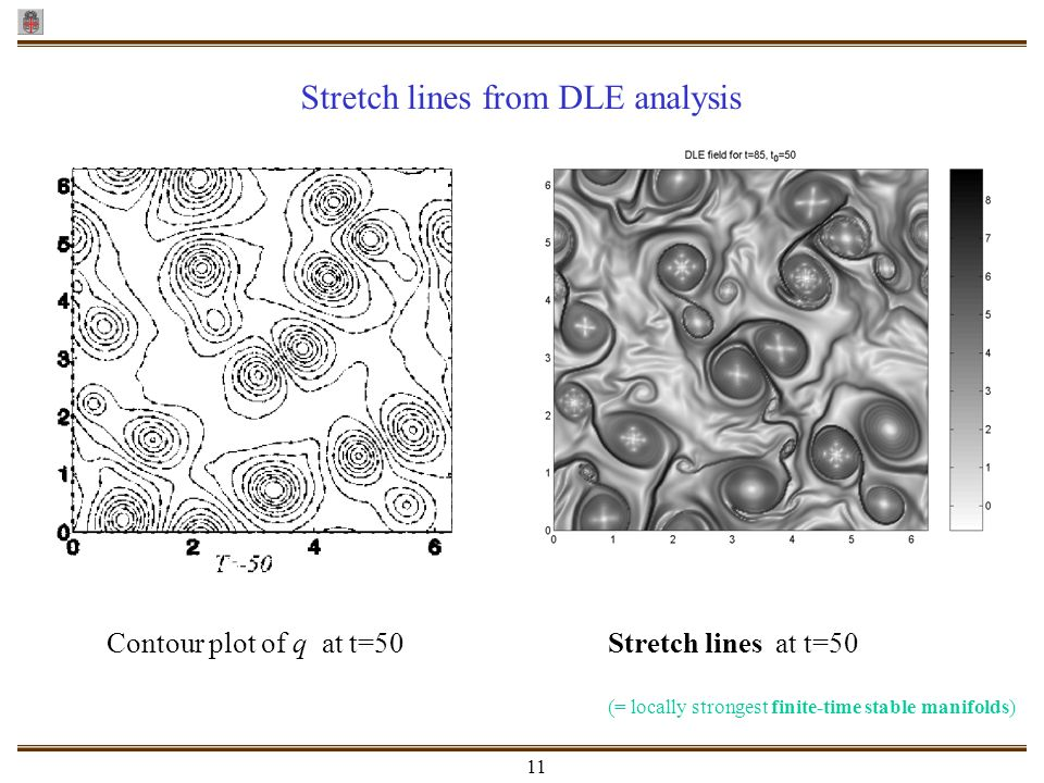 Stretch lines from DLE analysis