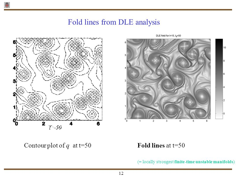Fold lines from DLE analysis