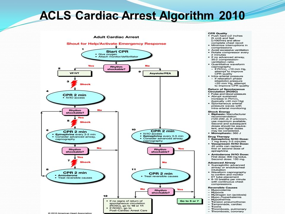 ACLS Cardiac Arrest Algorithm 2010