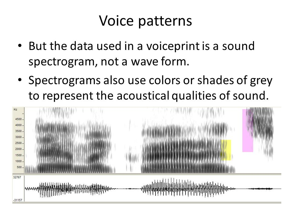 the voice pattern in color of In the yele language in papua new guinea, for example, there are only basic color terms : for black, white, and red but there's a broad vocabulary of everyday objects — like the sky, ashes, and tree : sap — that are used as color comparisons that cover almost all english color words.