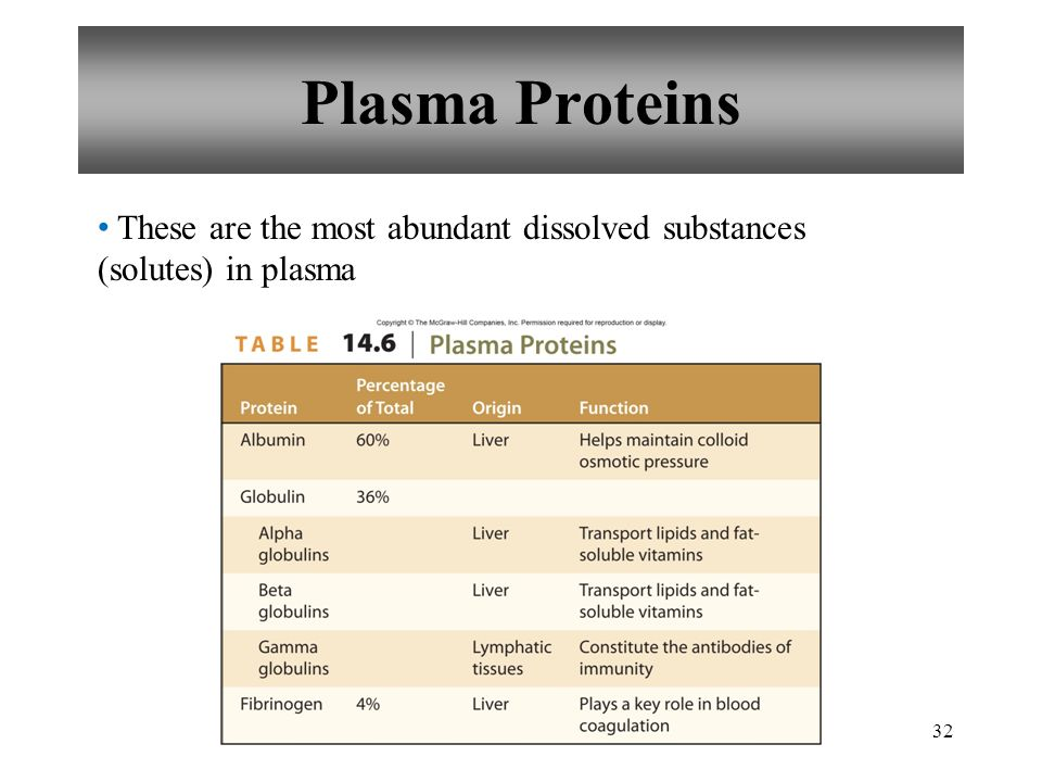 Plasma Proteins These are the most abundant dissolved substances (solutes) in plasma