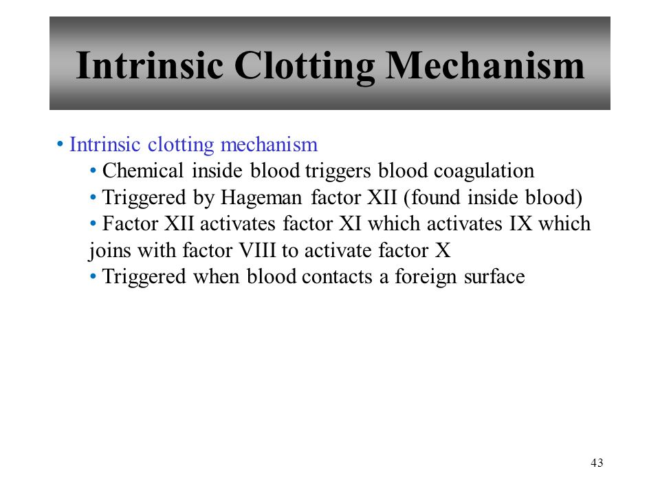 Intrinsic Clotting Mechanism