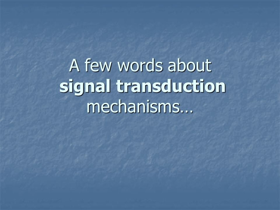 A few words about signal transduction mechanisms…