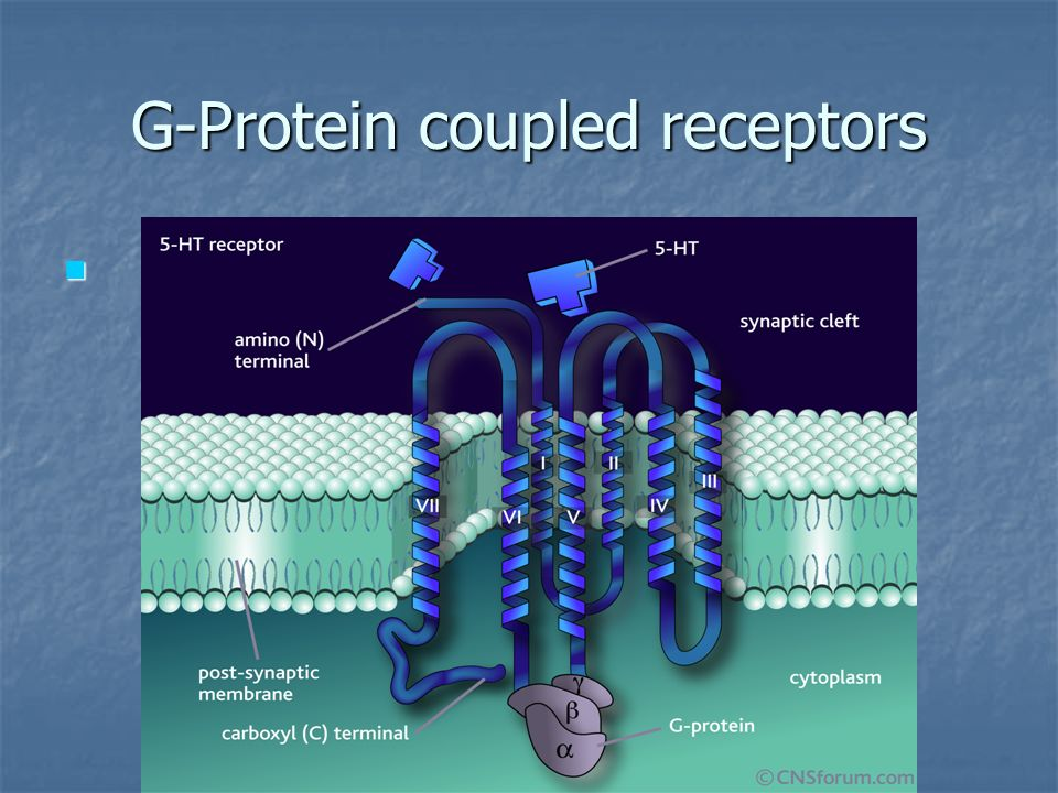 G-Protein coupled receptors