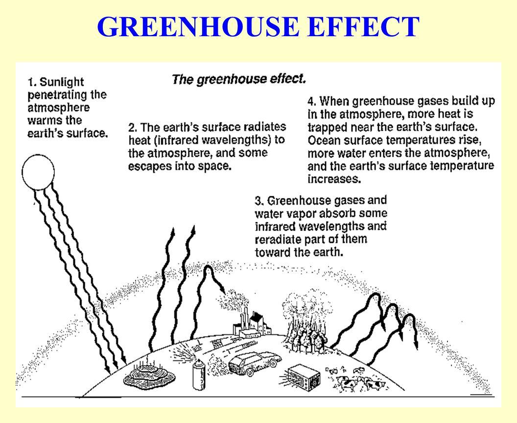 what are the major greenhouse gases naturegenetics co u2022 rh naturegenetics co