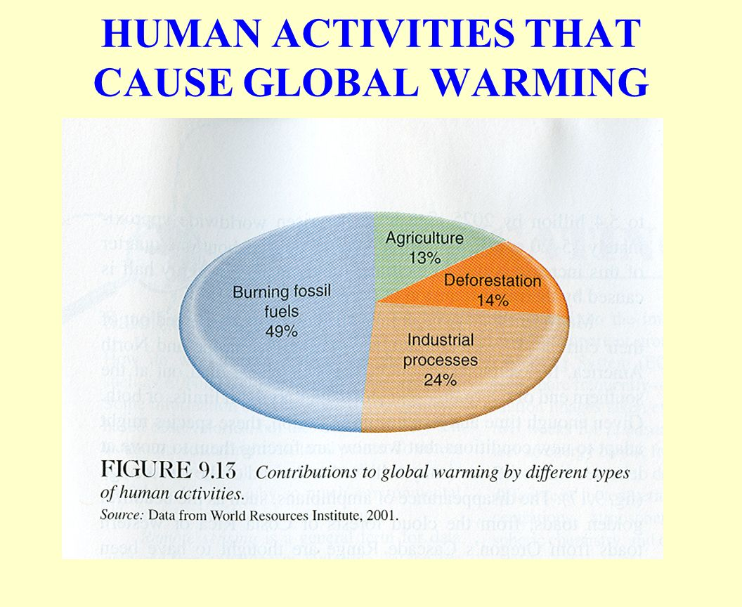 global warming caused by human activities essay Global warming essay a variety of human activities release i strongly believe global warming was caused by man because we use chemical and.