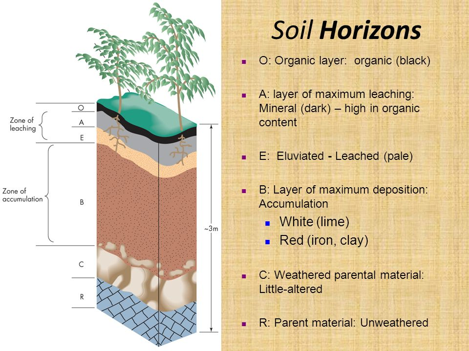 2 formation of soils ppt video online download for Soil forming minerals
