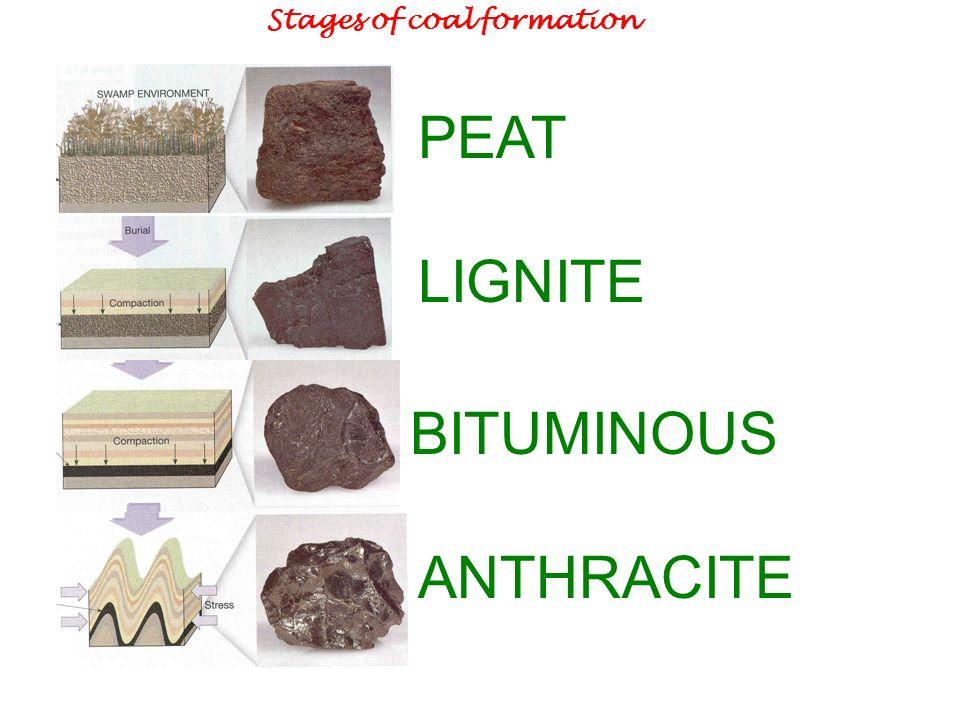 chapter 6 sedimentary rocks ppt video online download