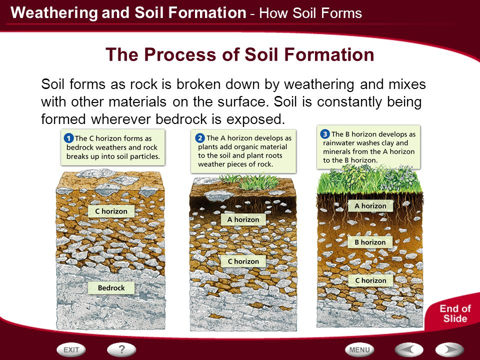 Table of contents rocks and weathering how soil forms for Meaning of soil formation