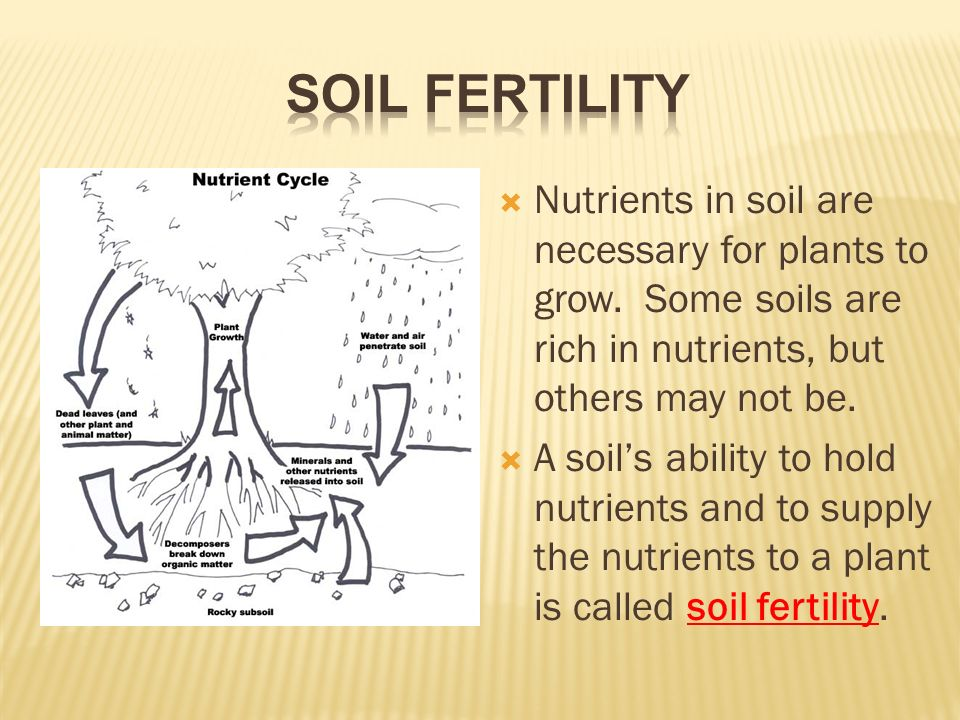 Soil and soil conservation ppt video online download for What is rich soil called