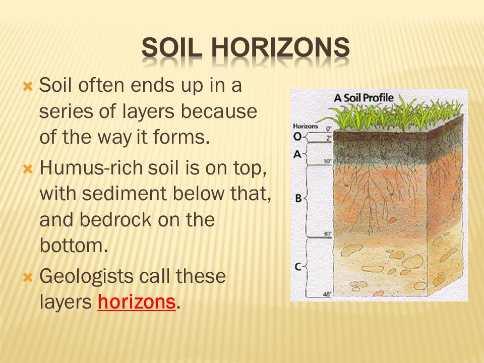 Soil and soil conservation ppt video online download for Why the soil forms layers in water