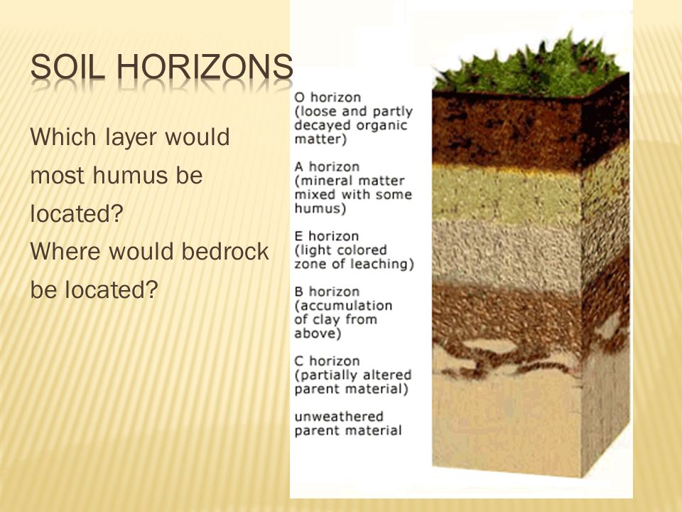 Soil and soil conservation ppt video online download for Top layer of soil