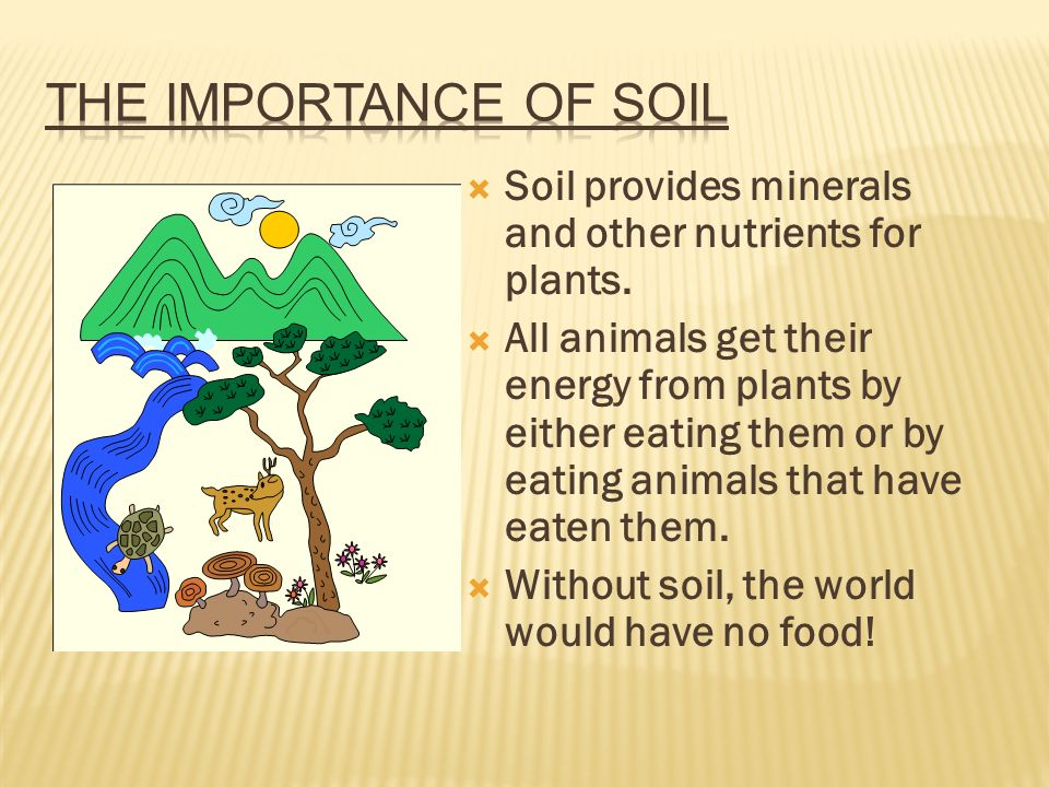 Soil and soil conservation ppt video online download for Importance of soil minerals
