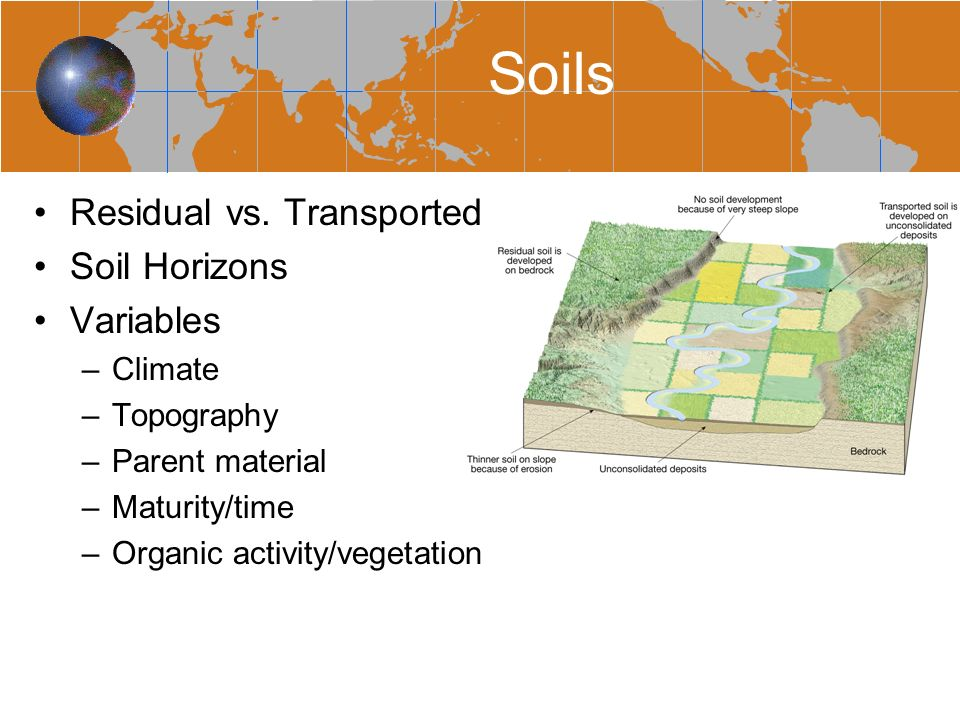 We can save 700 lira by not doing soil testing ppt for Mineral soil vs organic soil