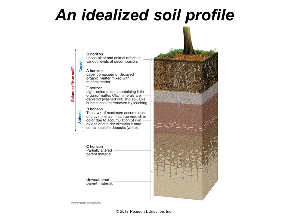 Earth science 13e tarbuck lutgens ppt download for Soil meaning in english