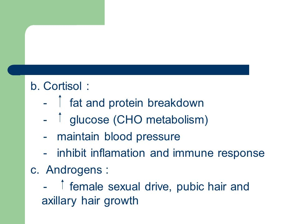 b. Cortisol : - fat and protein breakdown. - glucose (CHO metabolism) - maintain blood pressure.