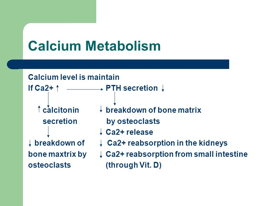 Calcium Metabolism Calcium level is maintain If Ca2+ PTH secretion