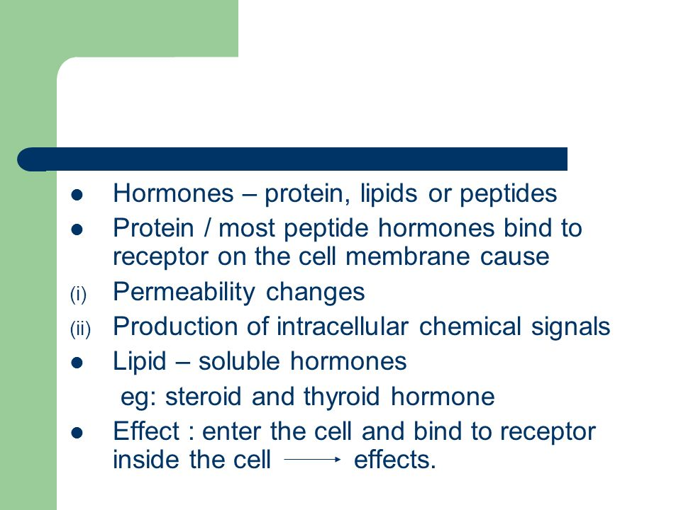 Hormones – protein, lipids or peptides