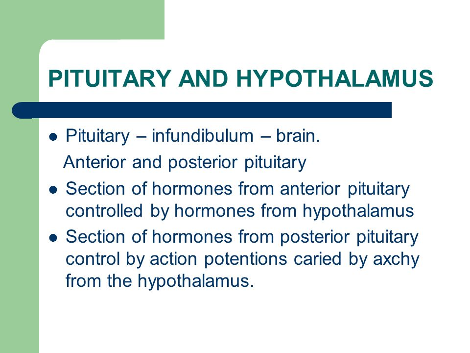PITUITARY AND HYPOTHALAMUS