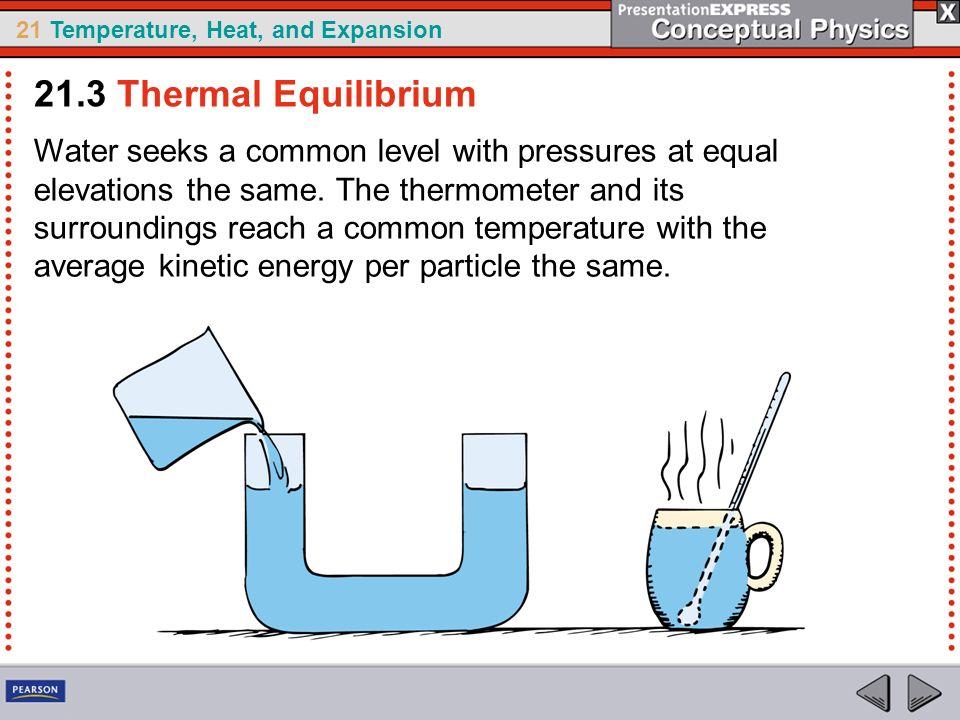 21.3 Thermal Equilibrium