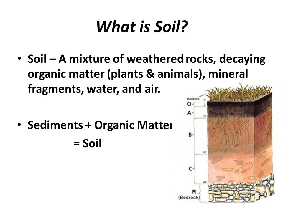 Chapter 6 weathering and soil ppt video online download for What is soil