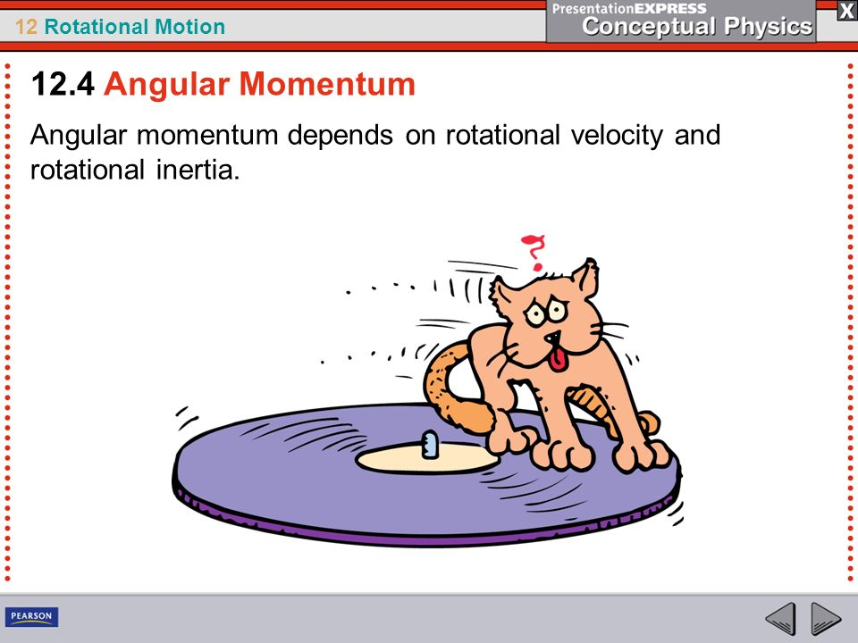 12.4 Angular Momentum Angular momentum depends on rotational velocity and rotational inertia.