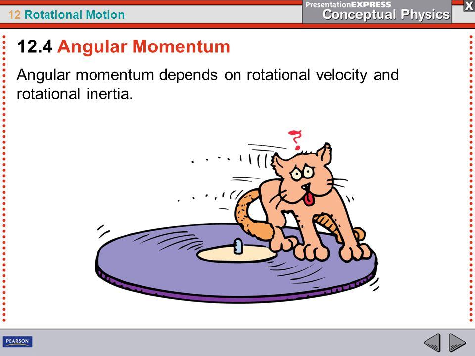 12.4 Angular Momentum Angular momentum depends on rotational velocity and rotational inertia.