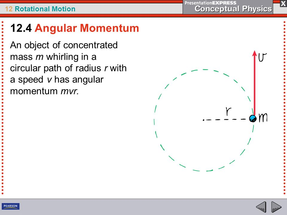 12.4 Angular Momentum An object of concentrated mass m whirling in a circular path of radius r with a speed v has angular momentum mvr.