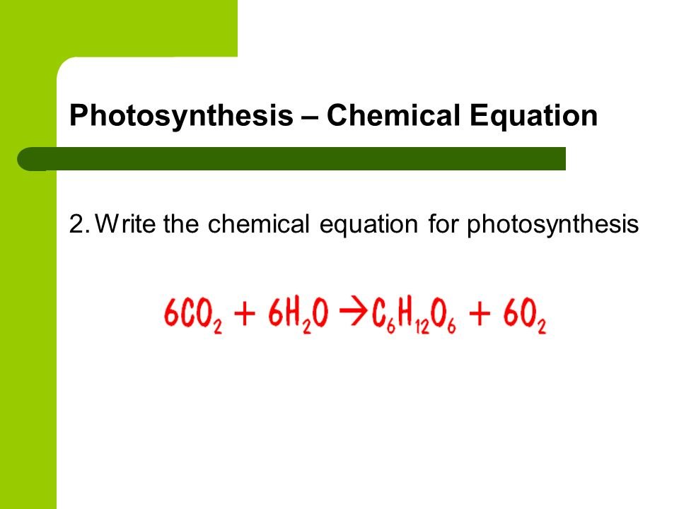 Photosynthesis – Chemical Equation