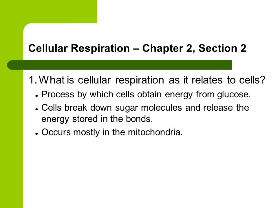 Cellular Respiration – Chapter 2, Section 2