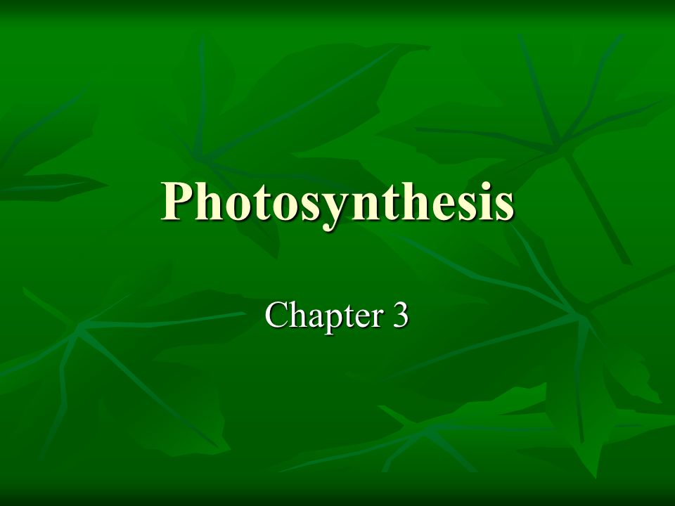 Photosynthesis Chapter 3