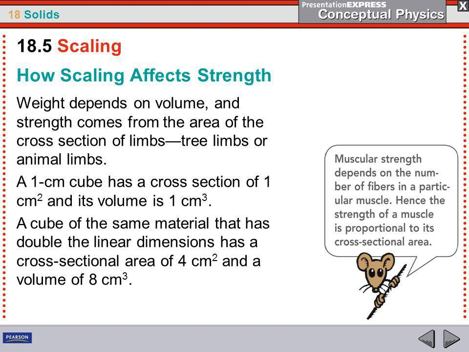 How Scaling Affects Strength