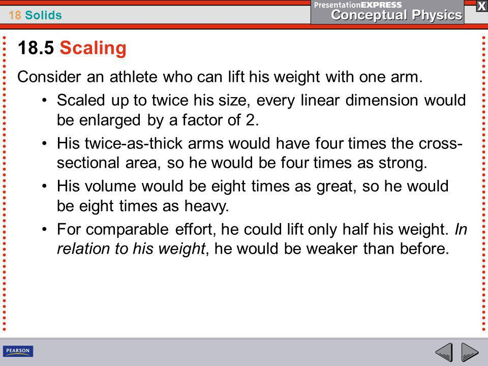 18.5 Scaling Consider an athlete who can lift his weight with one arm.