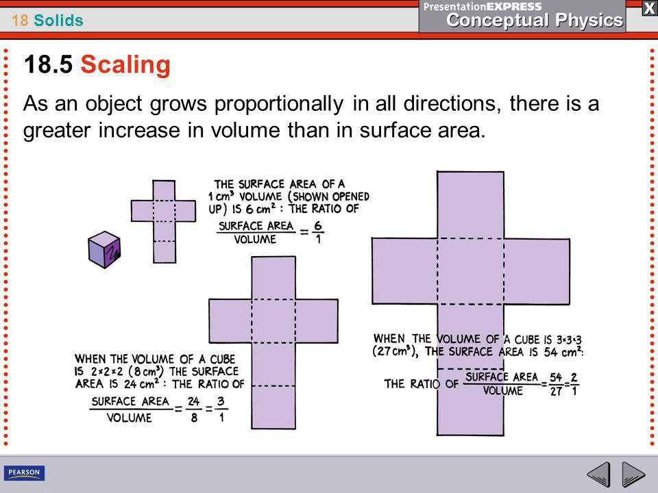 18.5 Scaling As an object grows proportionally in all directions, there is a greater increase in volume than in surface area.