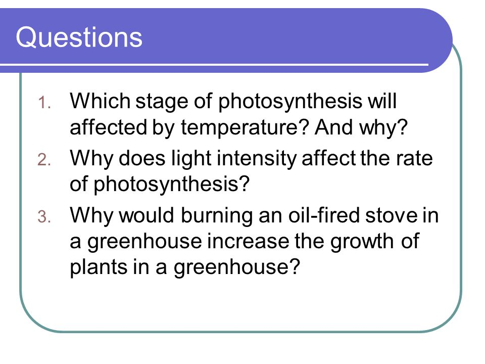 light intensity effects rate photosynthesis Read this free science research paper and other term papers, research papers and book reports effect of light intensity on photosynthesis effect of light intensity.