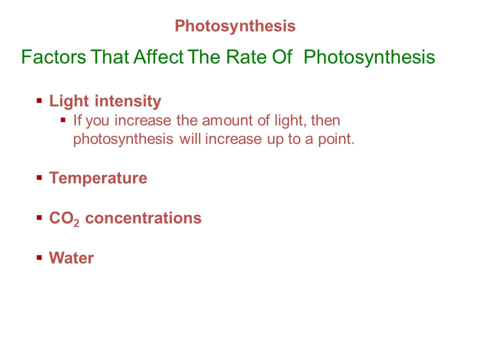 factors that affect photosynthesis Click here to view, download or print flexiprep exclusive factors affecting rate of photosynthesis.