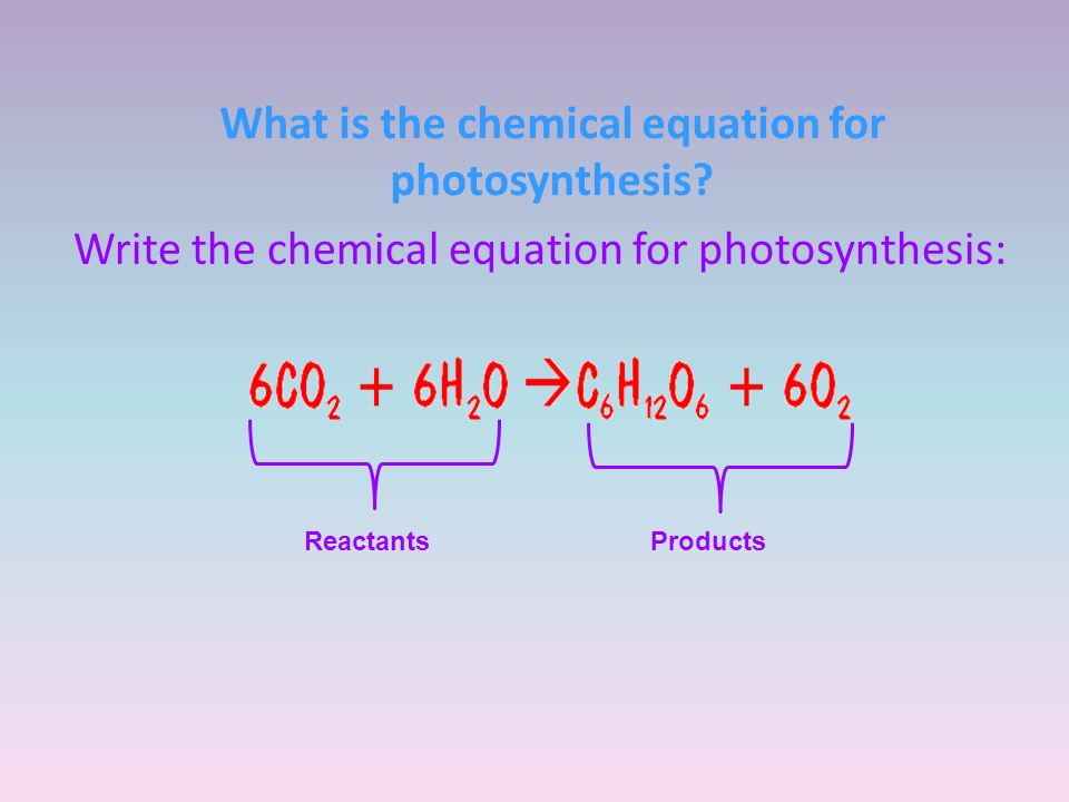 chemical equation for photsynthesis Photosynthesis and cellular respiration study once the energy that was in sunlight is changed into chemical energy by photosynthesis chemical equation for.