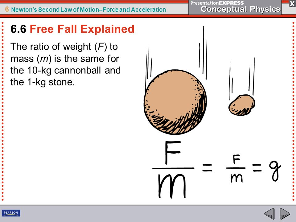 6.6 Free Fall Explained The ratio of weight (F) to mass (m) is the same for the 10-kg cannonball and the 1-kg stone.
