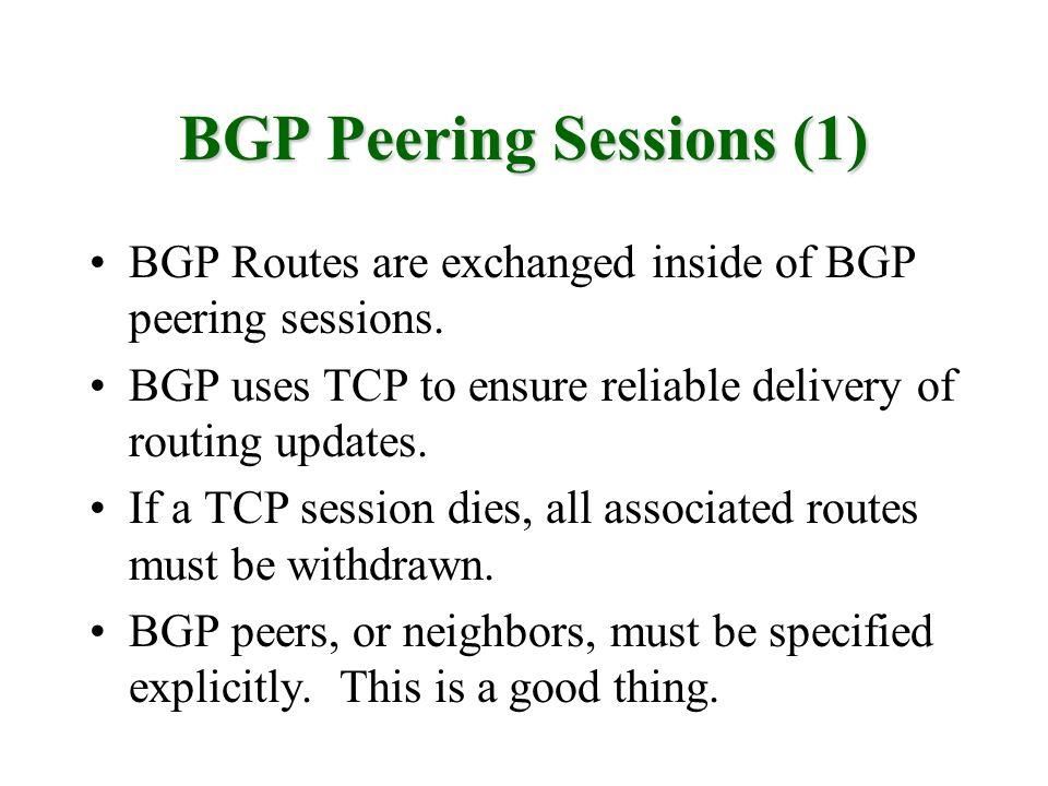 BGP Peering Sessions (1)