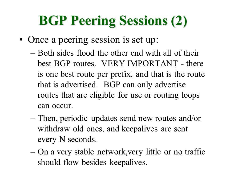 BGP Peering Sessions (2)