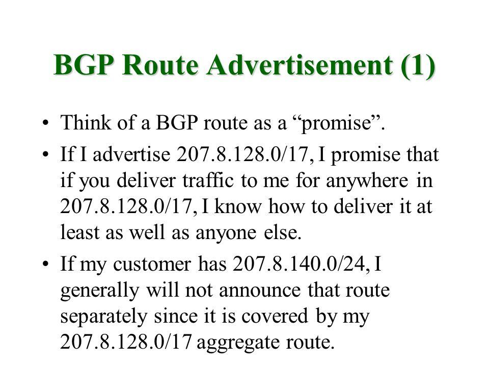 BGP Route Advertisement (1)