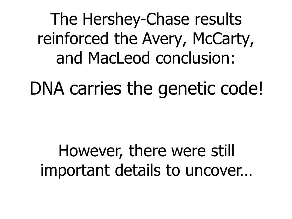 DNA carries the genetic code!