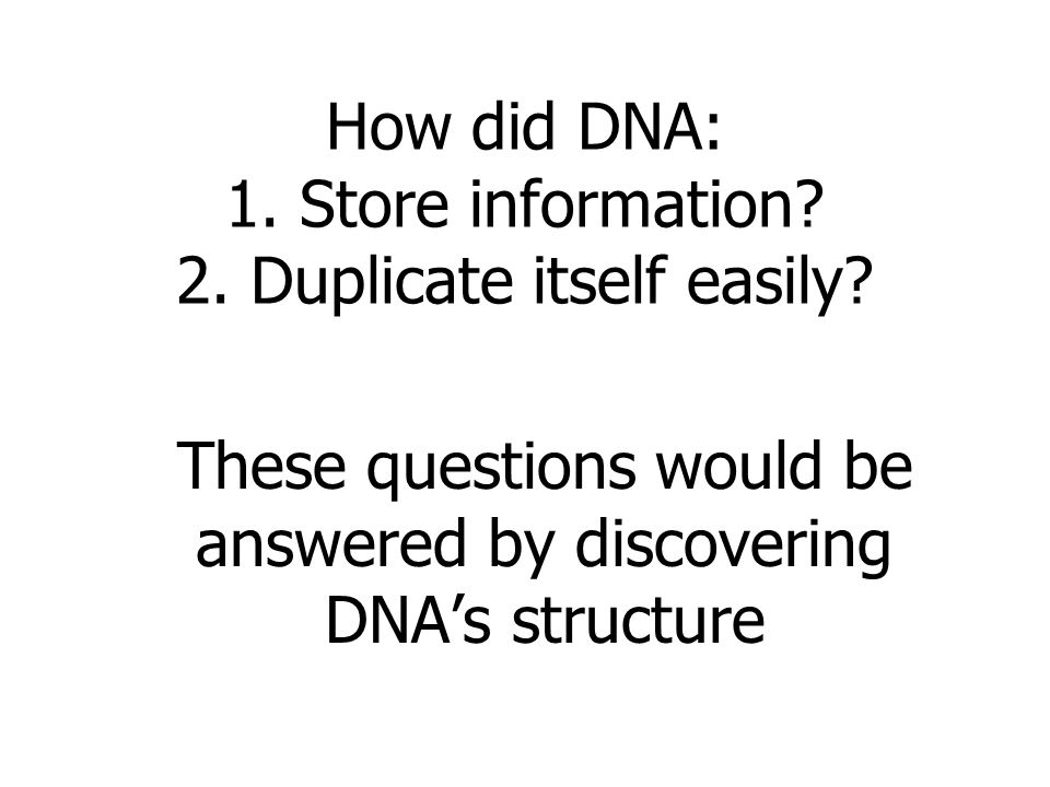 How did DNA: 1. Store information 2. Duplicate itself easily