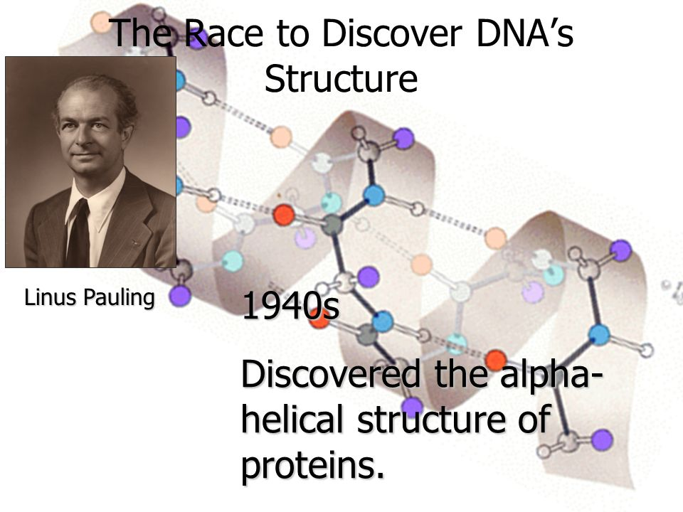 The Race to Discover DNA's Structure